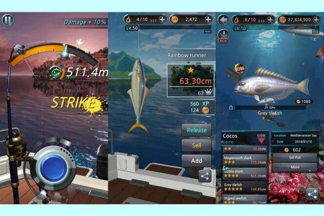 Free hunting and fishing games download.