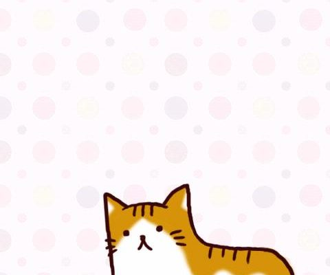 cute-live-wallpaper-for-cats-lovers-nyankoro-live